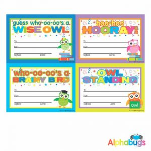 Certificates – Wise Owls 1