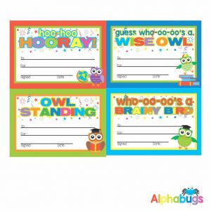 Certificates – Wise Owls 2