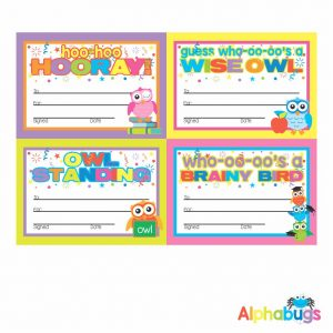 Certificates – Wise Owls 3