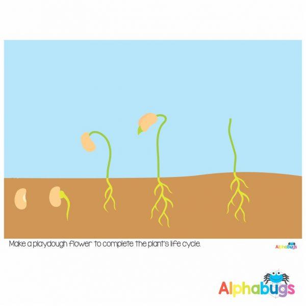 Playdough Mat – Cycles in Nature 5