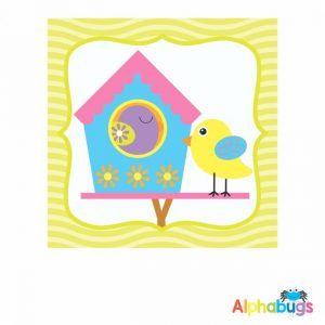 Classroom Theme - Beautiful Birds