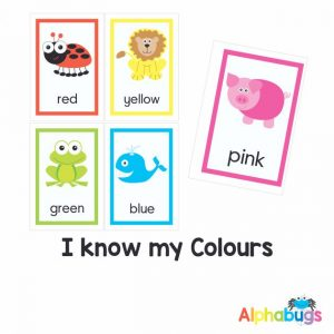 Downloadable Flashcards